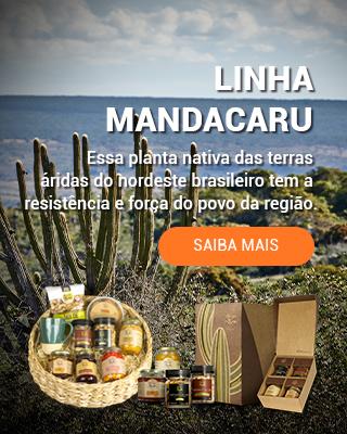 Banner Linha Mandacaru